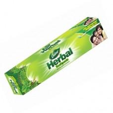 Dabur Herbal Tooth Paste